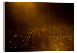 Trätavla  Brown bear in the forest - Cultura/Seb Oliver