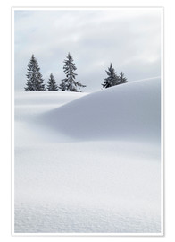Premiumposter Snow dunes in front of white sky