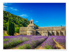 Premiumposter  Monastery with lavender field - Terry Eggers