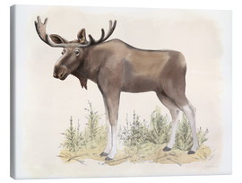 Canvastavla  Wildlife - moose - Beth Grove