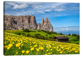 Canvastavla  Spring on the Alpe di Siusi in South Tyrol - Achim Thomae