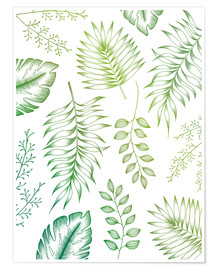 Premiumposter Tropical leaves
