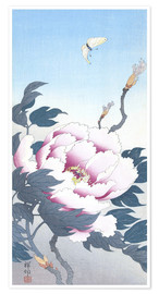 Premiumposter Peony with butterfly