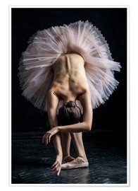 Premiumposter  Beautiful ballerina bows