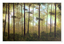 Premiumposter Forest morning
