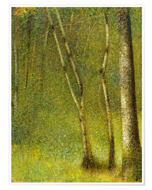 Premiumposter The Forest at Pontaubert
