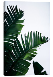 Canvastavla  Palm Leaves 16 - Mareike Böhmer