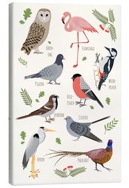 Canvastavla  Bird Species - English - Kidz Collection