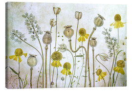 Canvastavla  Poppy and Helenium - Mandy Disher