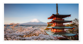 Premiumposter  Pagoda and Mt. Fuji with cherry blossom, Japan - Matteo Colombo