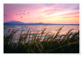 Premiumposter Lake Garda Sunrise