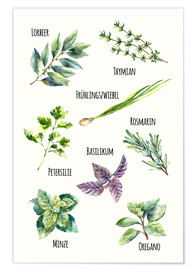 Premiumposter  Herbs (German)