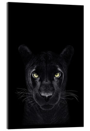 Akrylglastavla  Black Panther on a black ground II - Valeriya Korenkova