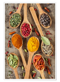 Premiumposter Colorful spices in wooden spoons