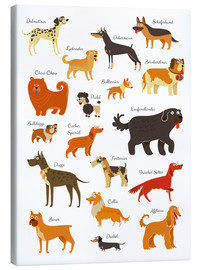 Canvastavla  Dogs in all sizes - Kidz Collection