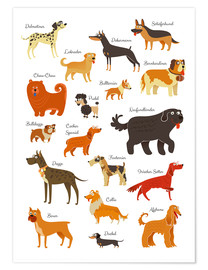 Poster  Dogs in all sizes - Kidz Collection
