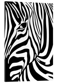 Akrylglastavla  Black And White Zebra Portrait - Radu Bercan