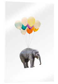 Akrylglastavla  Elephant with colorful balloons - Radu Bercan