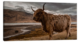 Canvastavla  Highland cattle - Art Couture