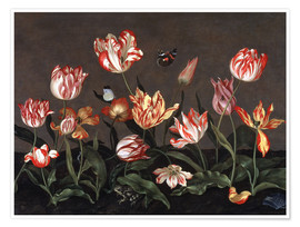 Premiumposter  Still life with tulips - Johannes Bosschaert
