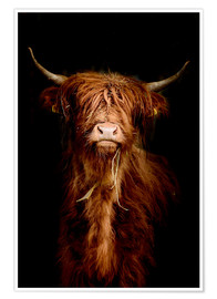 Poster  Scottish highland cattle - Art Couture